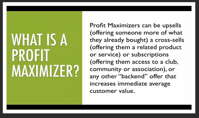 what_is_a_profit_maximizer